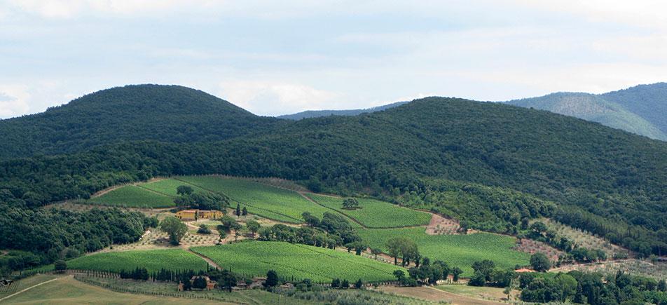 oliviero_toscani_002.jpg