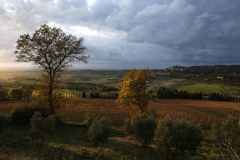 oliviero_toscani_020.jpg