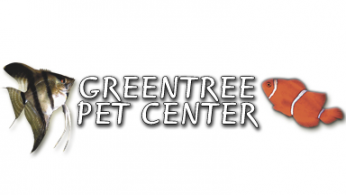 greentree.png