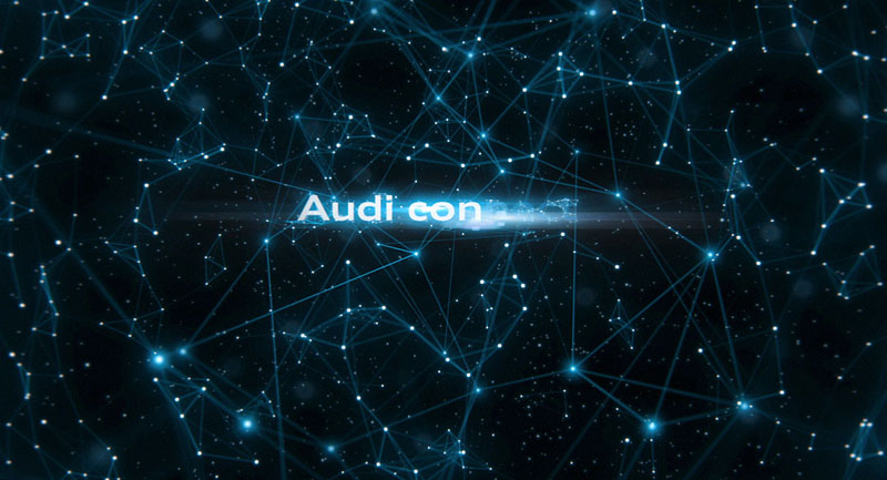 audi connect 2011_0051.jpg