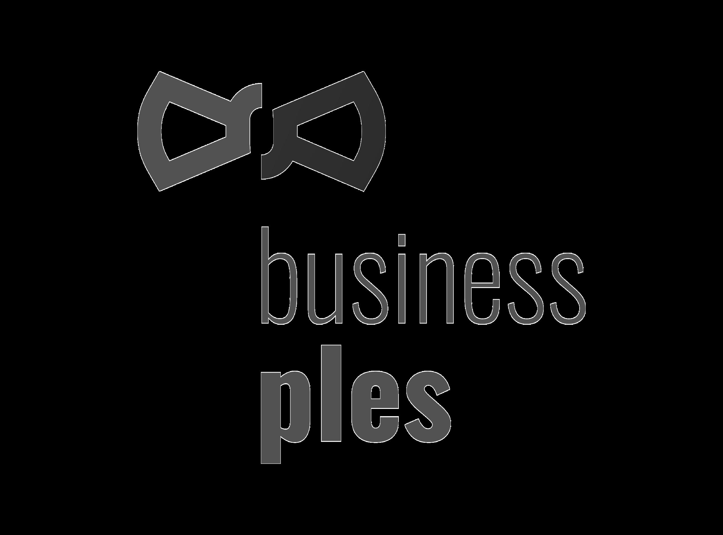 Business_ples.png