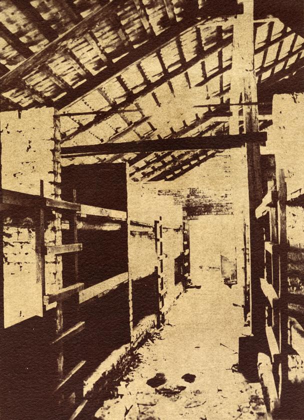 Auschwitz, Van Dyke Print