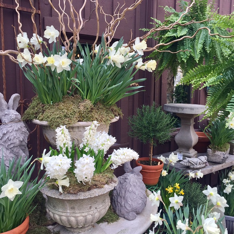 spring courtyard.jpg