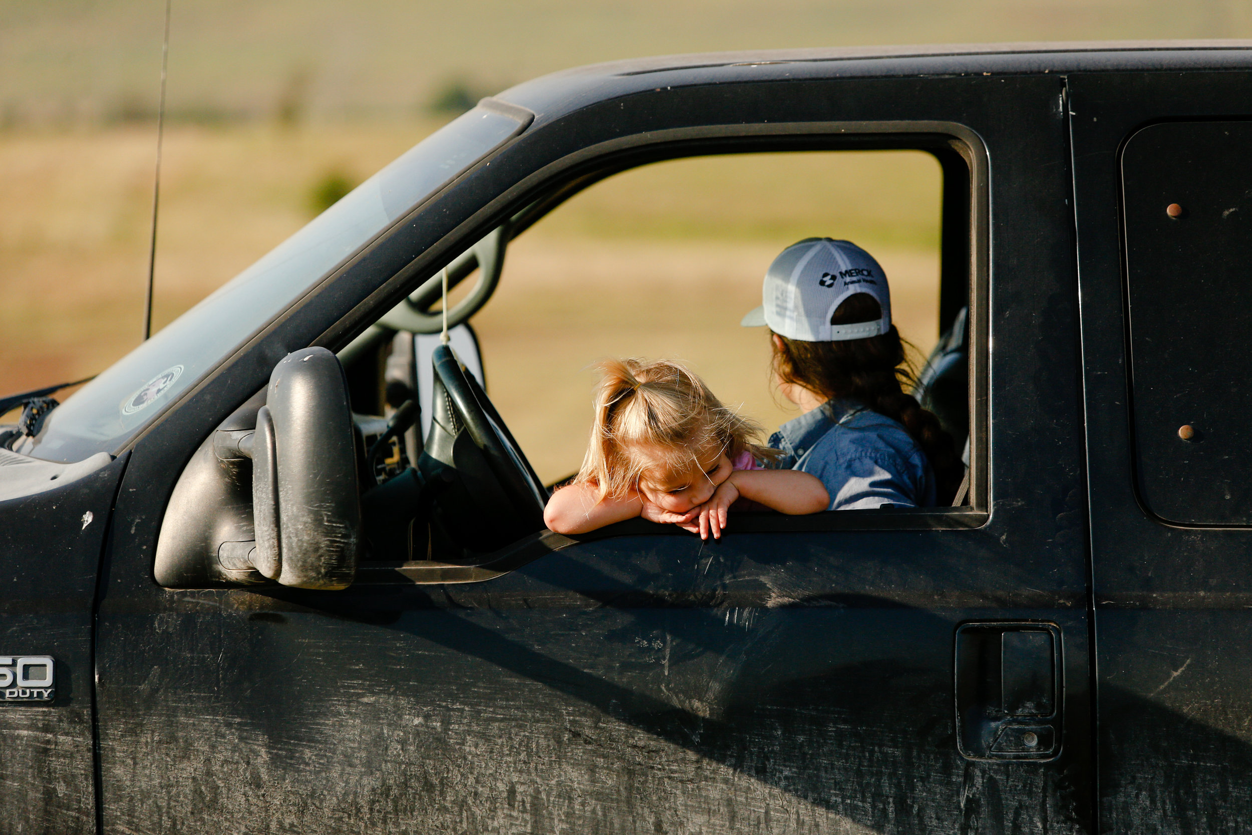 2-year-old Sonora Stierwalt sits in the lap of her mother, Jenna, and rests on the window as they drive from pasture to pasture, checking on cattle at Stierwalt Ranch.