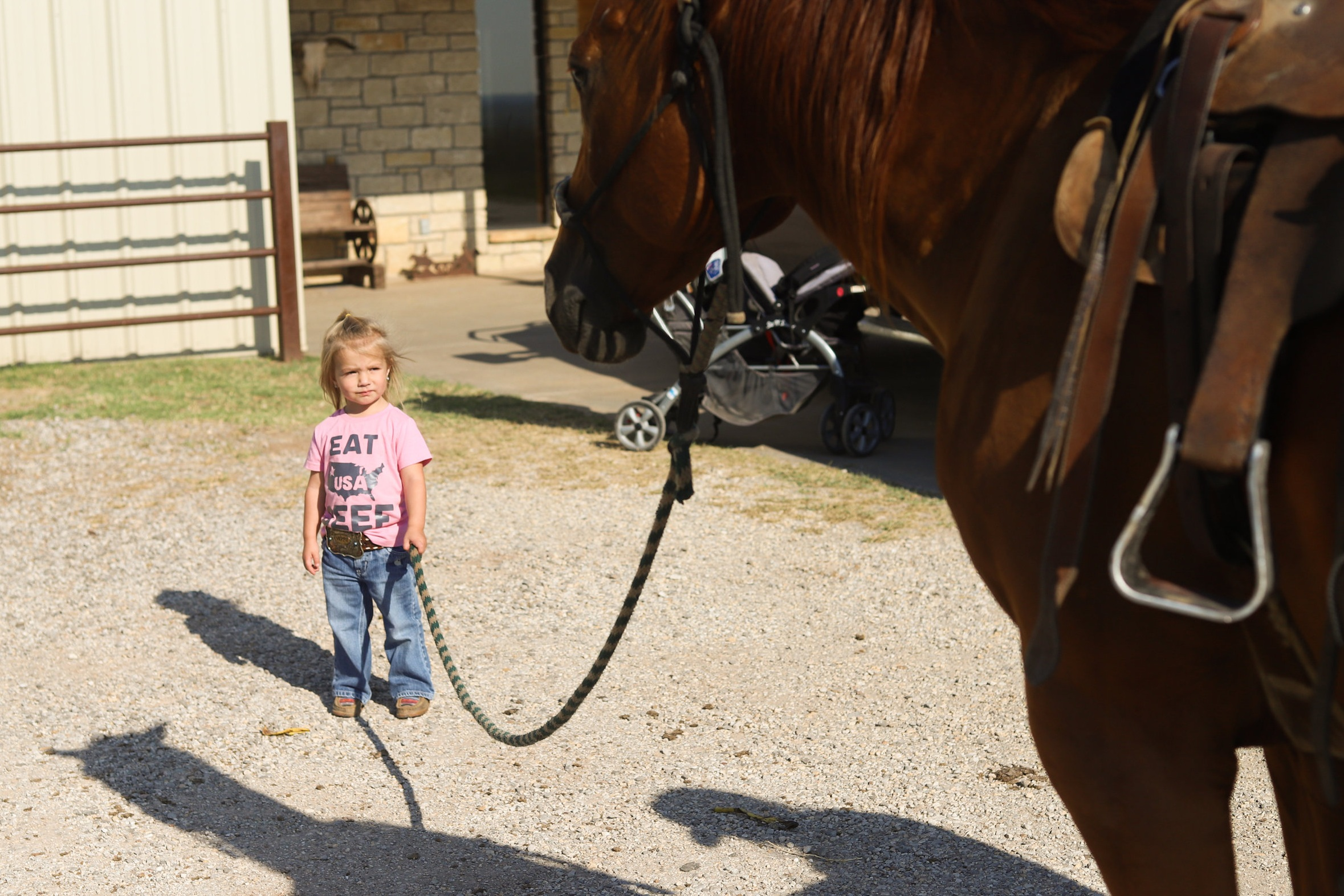 2-year-old Sonora Stierwalt holds the lead rope while her mother tacks a horse for rodeo at Stierwalt Ranch.