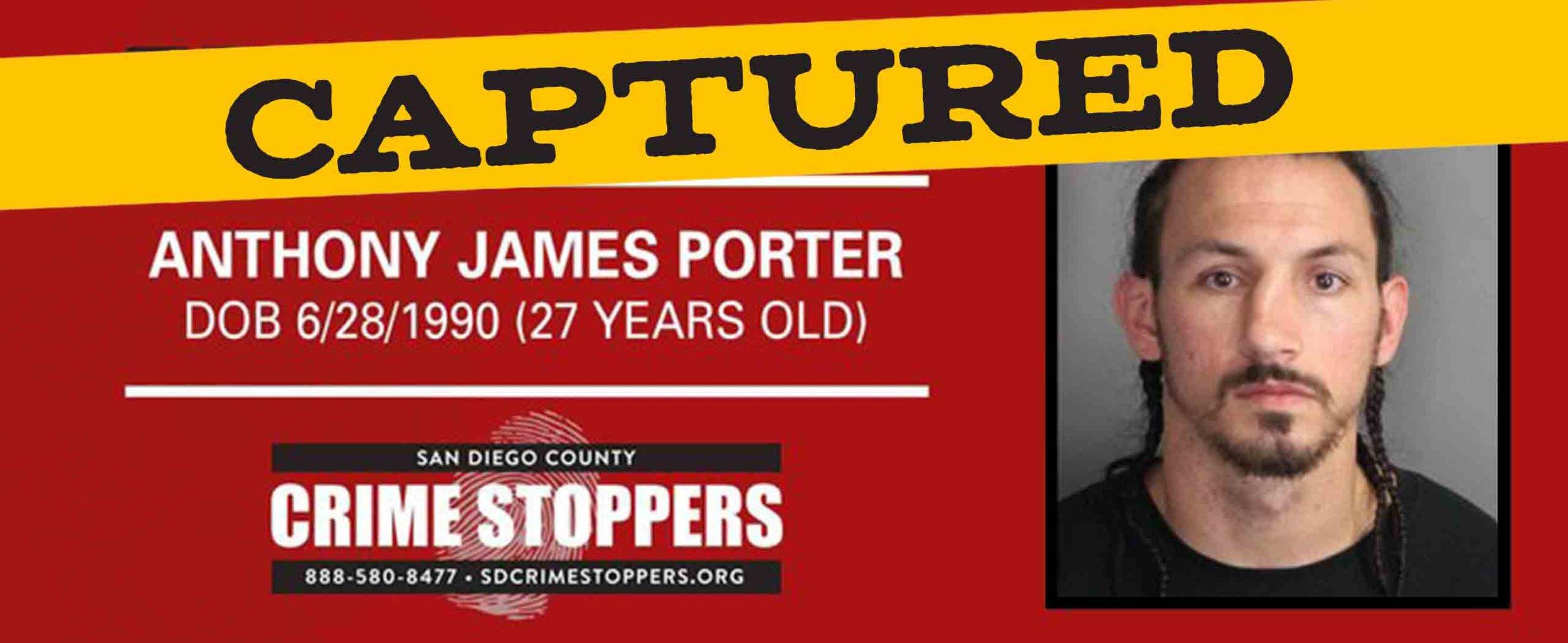 Anthony-Porter-Banner.jpg