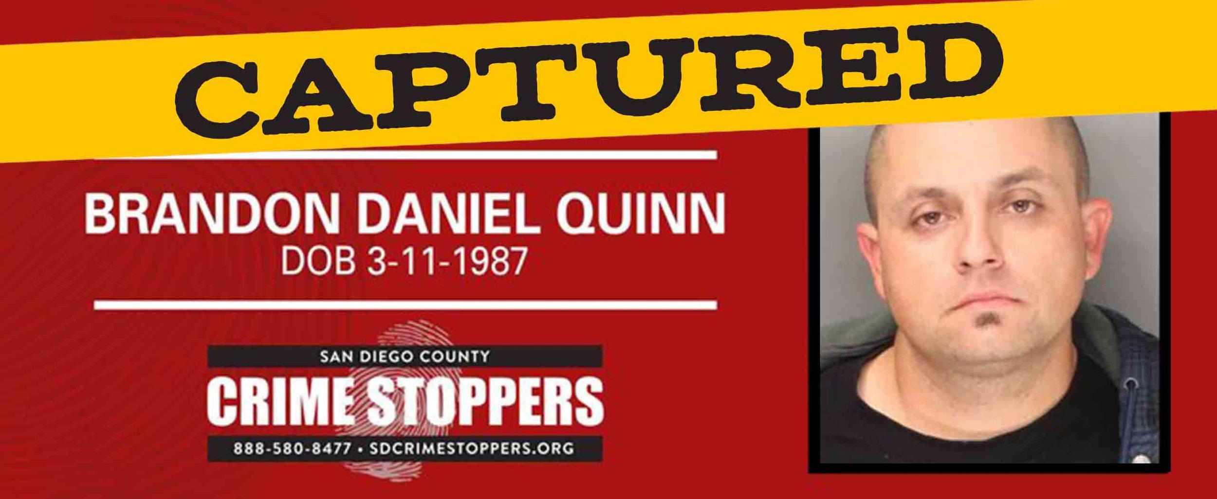 Brandon-Quinn-Banner.jpg