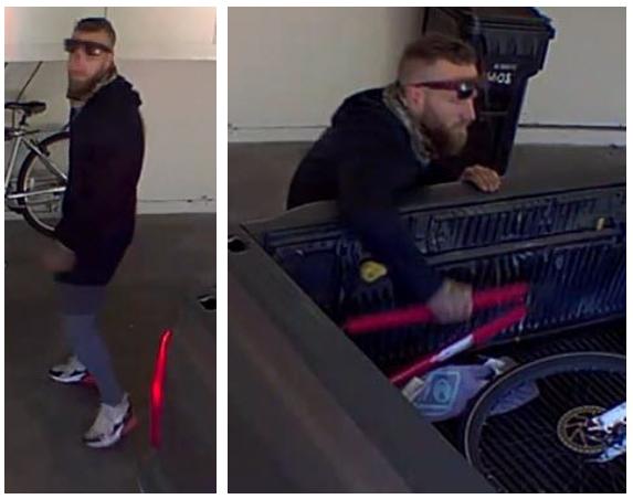 Suspect photo of recent Grand Theft