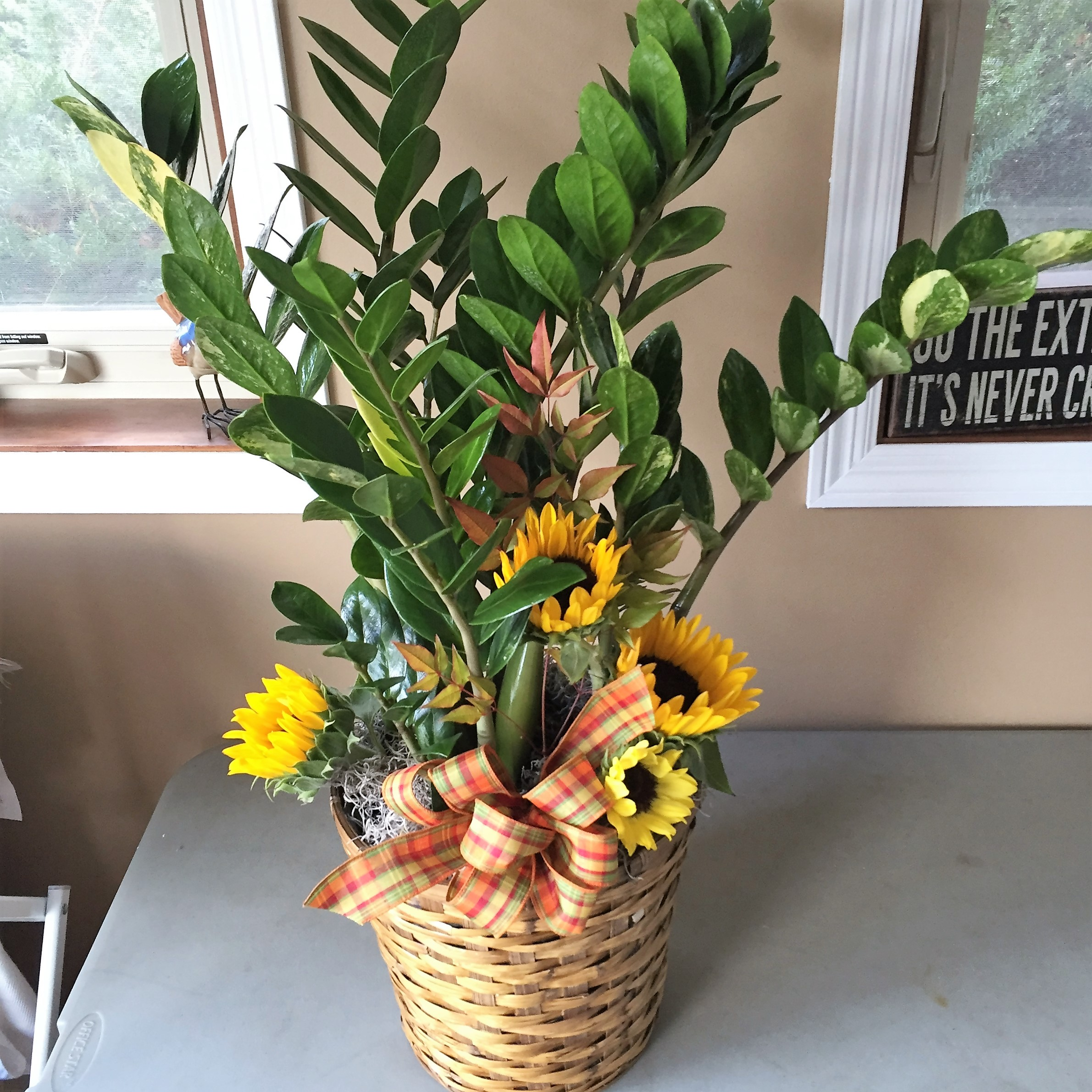#24 large ZZ plant with sunflowers inserts funeral plant