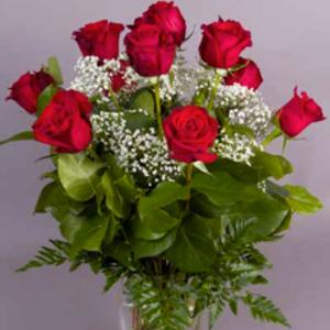 dozen-red-roses-golden-valley-mn.png