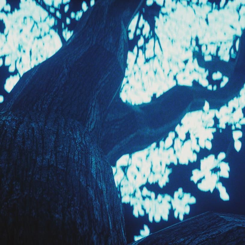 TREE - CINEMA4D R18 & OCTANE 3.xPLUGINS: FORESTER