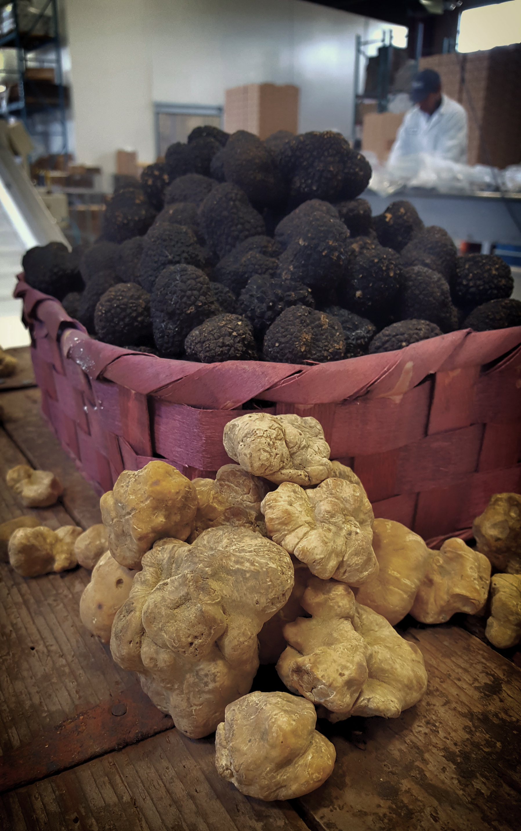 Summer Truffles and the season's very first Albas...