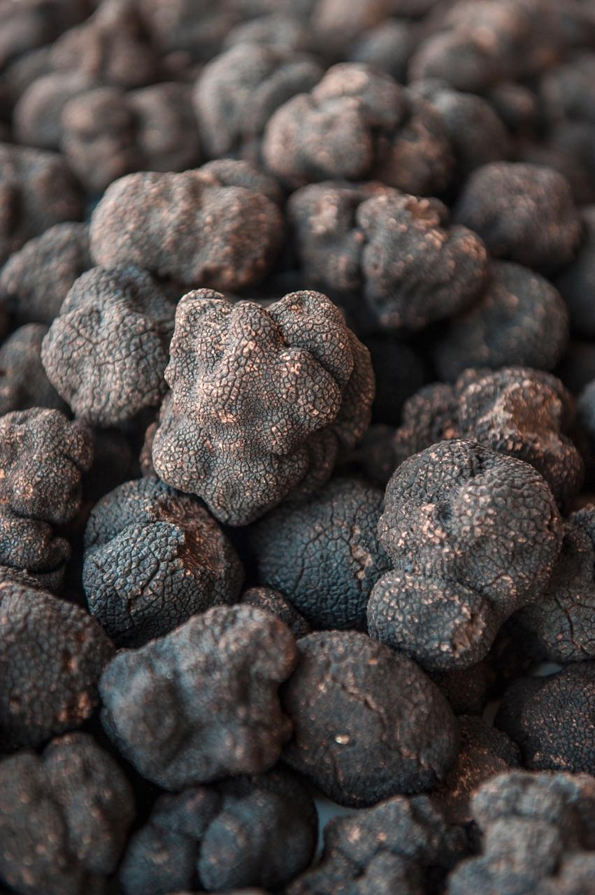 A Mountain of Black Truffles