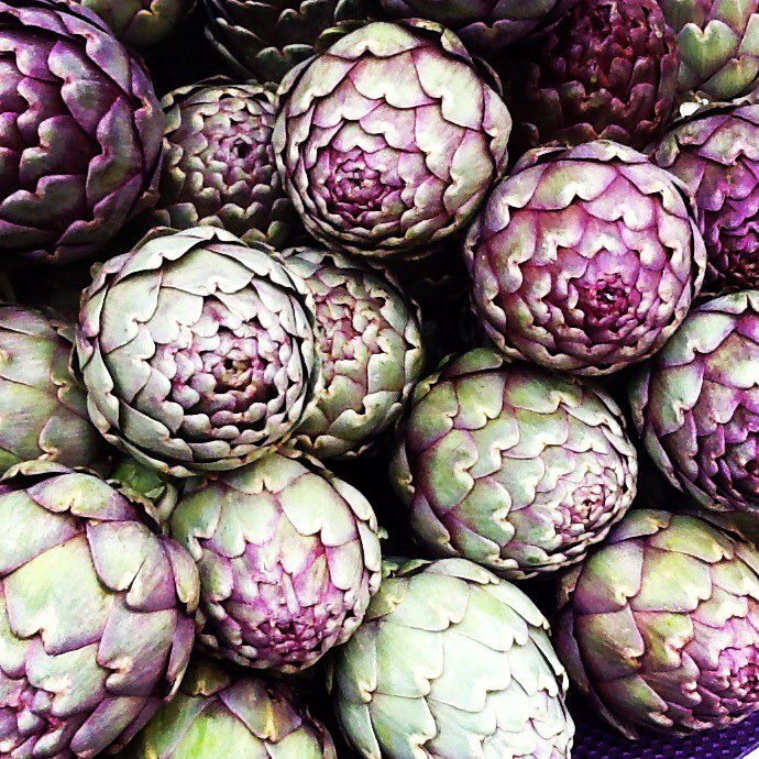 Italian Heirloom Artichokes