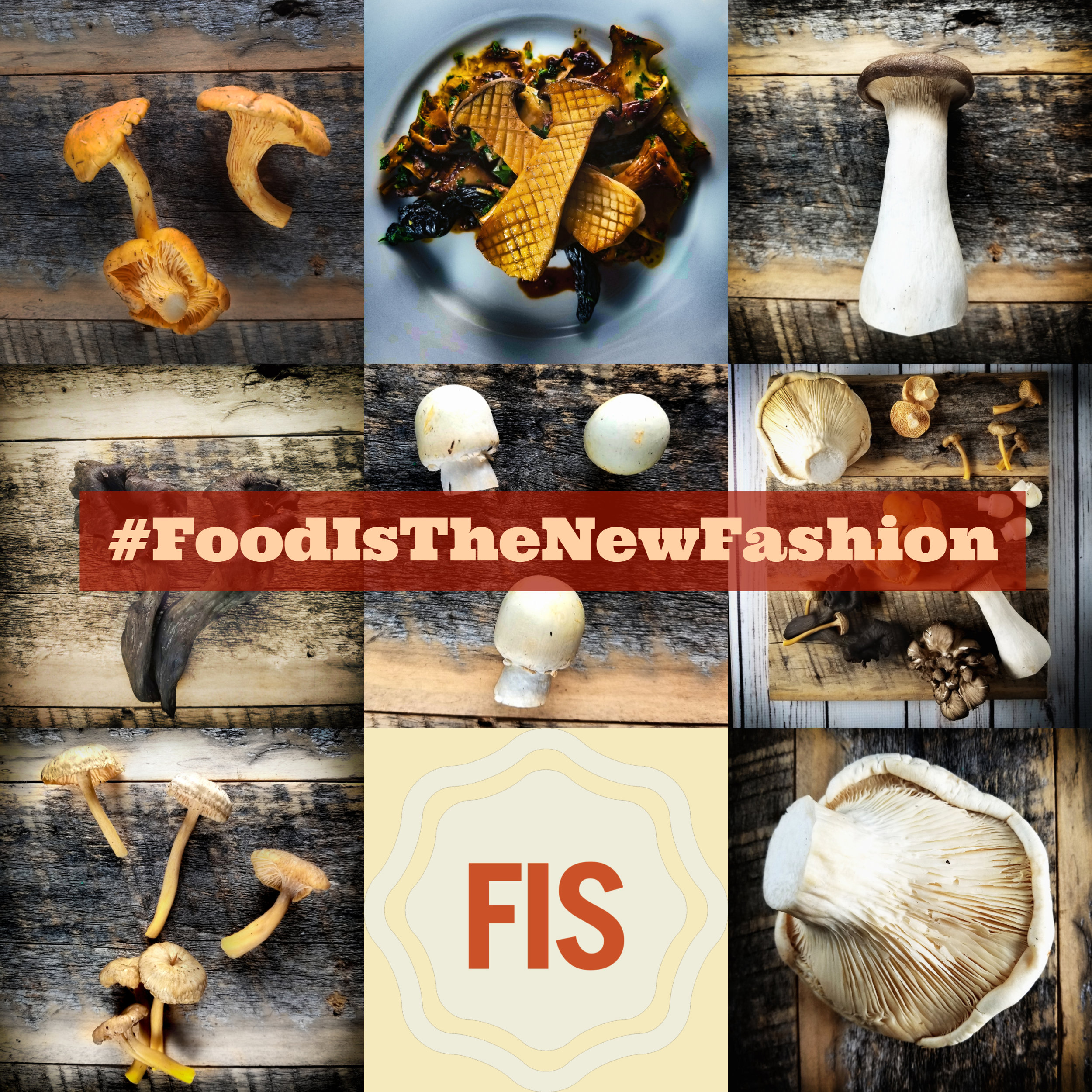 Cultivated and Wild Mushrooms - Which are on your menu right now?