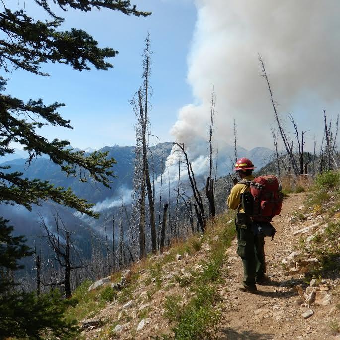 Lone Mountain 1 Fire 2014.jpg