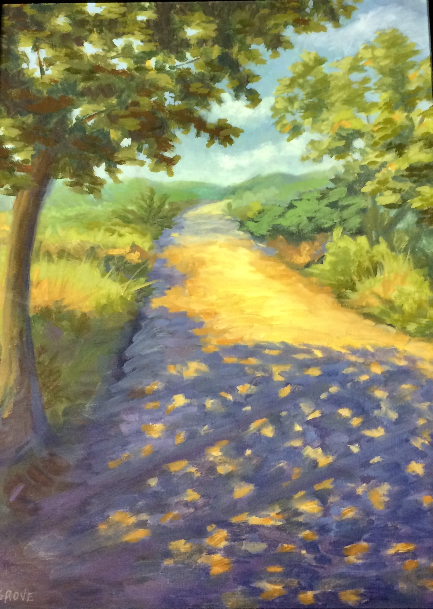Pogo's Path