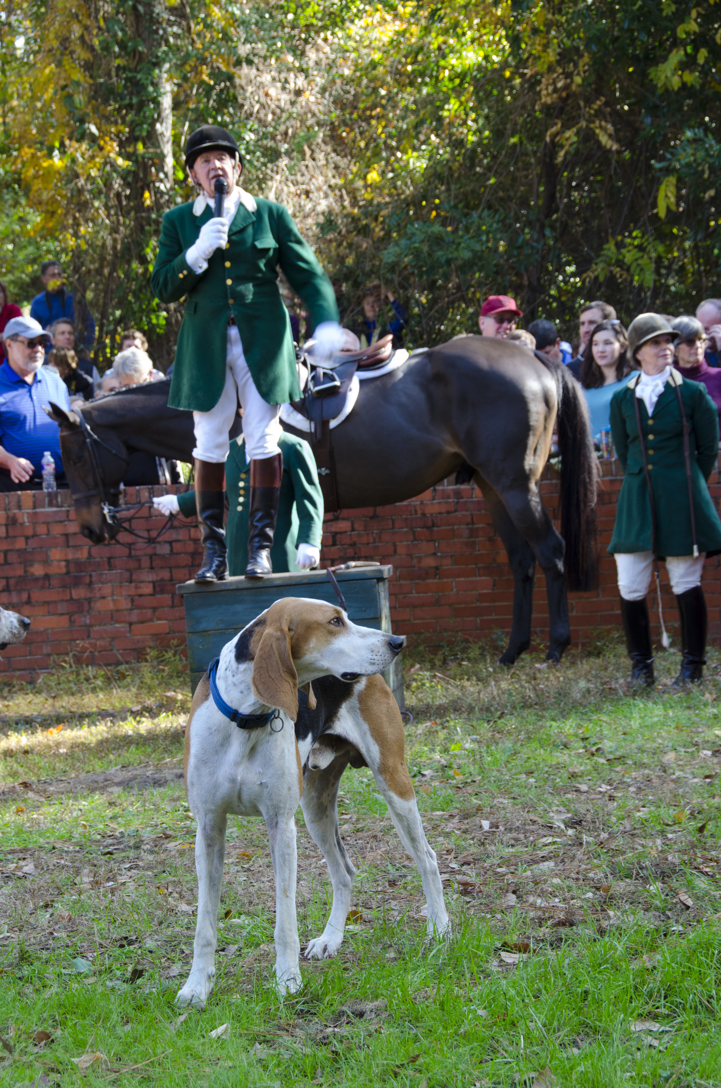 """Many in the crowd were """"all ears"""" as Larry Byers explained a bit about the history of Aiken Hounds and the origins of the Blessing of the Hounds tradition."""