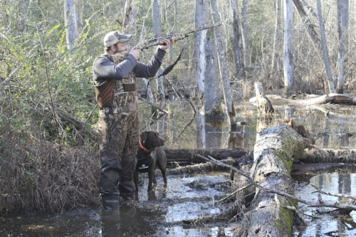Finding the right habitat is key to finding ducks. After that, the weather, and even the moon, can play a large role. (photo: SCW magazine -Harry Hampton Photo Contest photo by Kaylee Hudson)