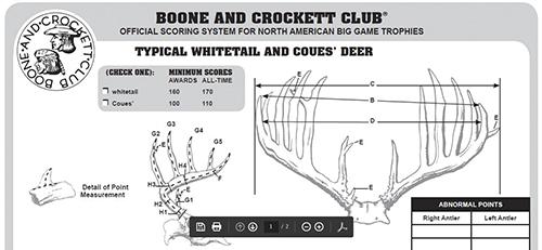 Example of part of a B&C club scoring sheet (copyright 2015 B&C)