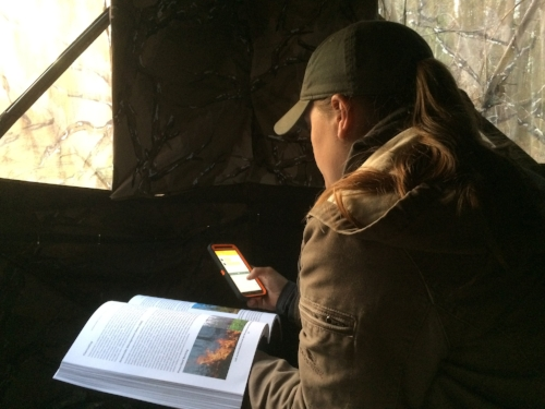 Multi-tasking. While waiting in a blond for turkeys to come into rocket net range, Alaina Gerrits stays in constant contact with the other members of the research team via text message, as well as catching up on her graduate school reading. ( SCDNR photo by David Lucas )