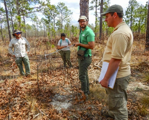 SCDNR herpetologist Will Dillman (far left) gets an update from his crew of technicians, Olivia Thomas, Joel Mota, and crew leader Jonathan Cooley.