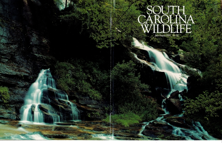 """SCW magazine photographer Michael Foster captured this image of the iconic """"Twin Falls"""" of Reedy Cove Creek for the cover of the July-August 1990 issue."""