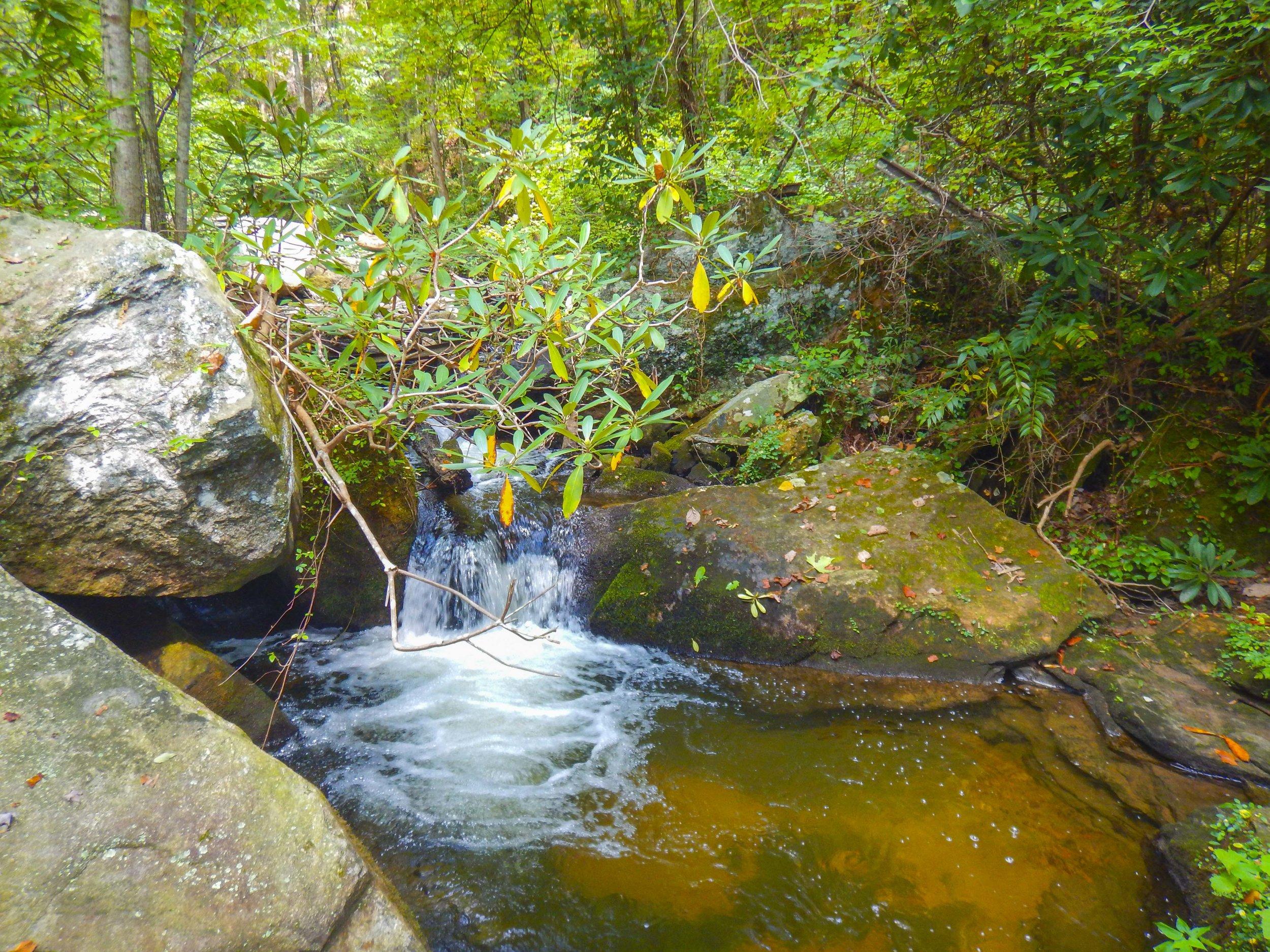 Reedy Cove Falls for Blog by DLucas_14.JPG