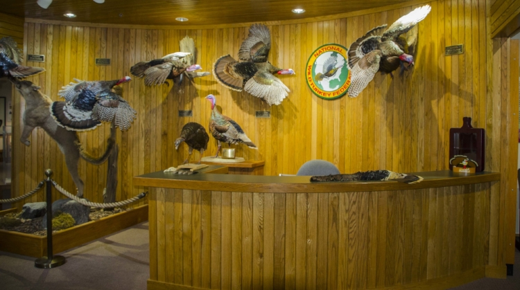 The entrance to the Winchester Museum of the wild turkey.(SCDNR photo by D. Lucas)