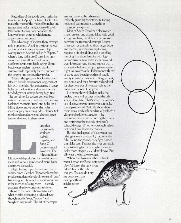 South Carolina Wildlife ,March-April 1982 -- page 21