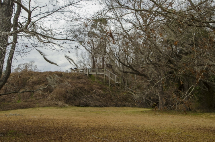 Climbing the steps to the top of the ancient Santee Indian Mound at the SNWR is like taking a walk back in time through some of the Palmetto State's most fascinating historical periods.