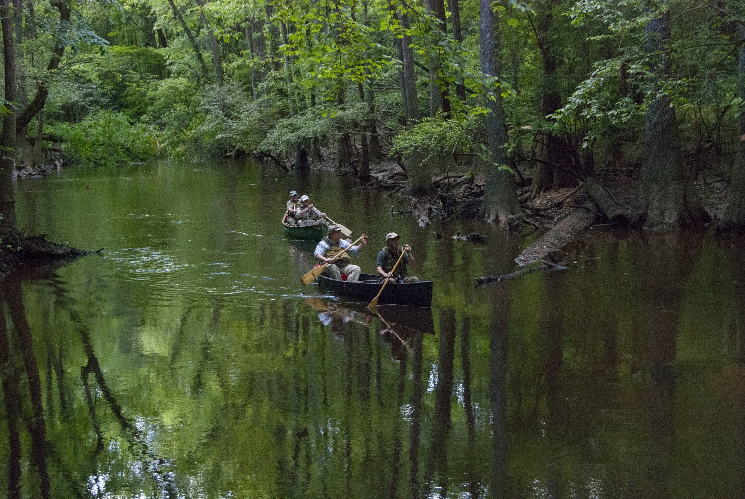 If you want to get away from the crowds for a peaceful day -- or weekend -- on the water, all you need is a canoe or kayak,a car-top carrier, and a plan. The Capital City - Lake Murray Country tourism region can help with the plan.