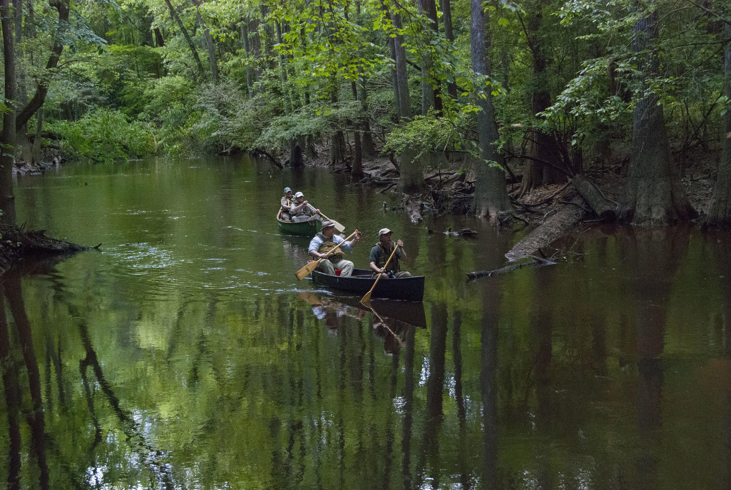 Cedar Creek Views_4.JPG