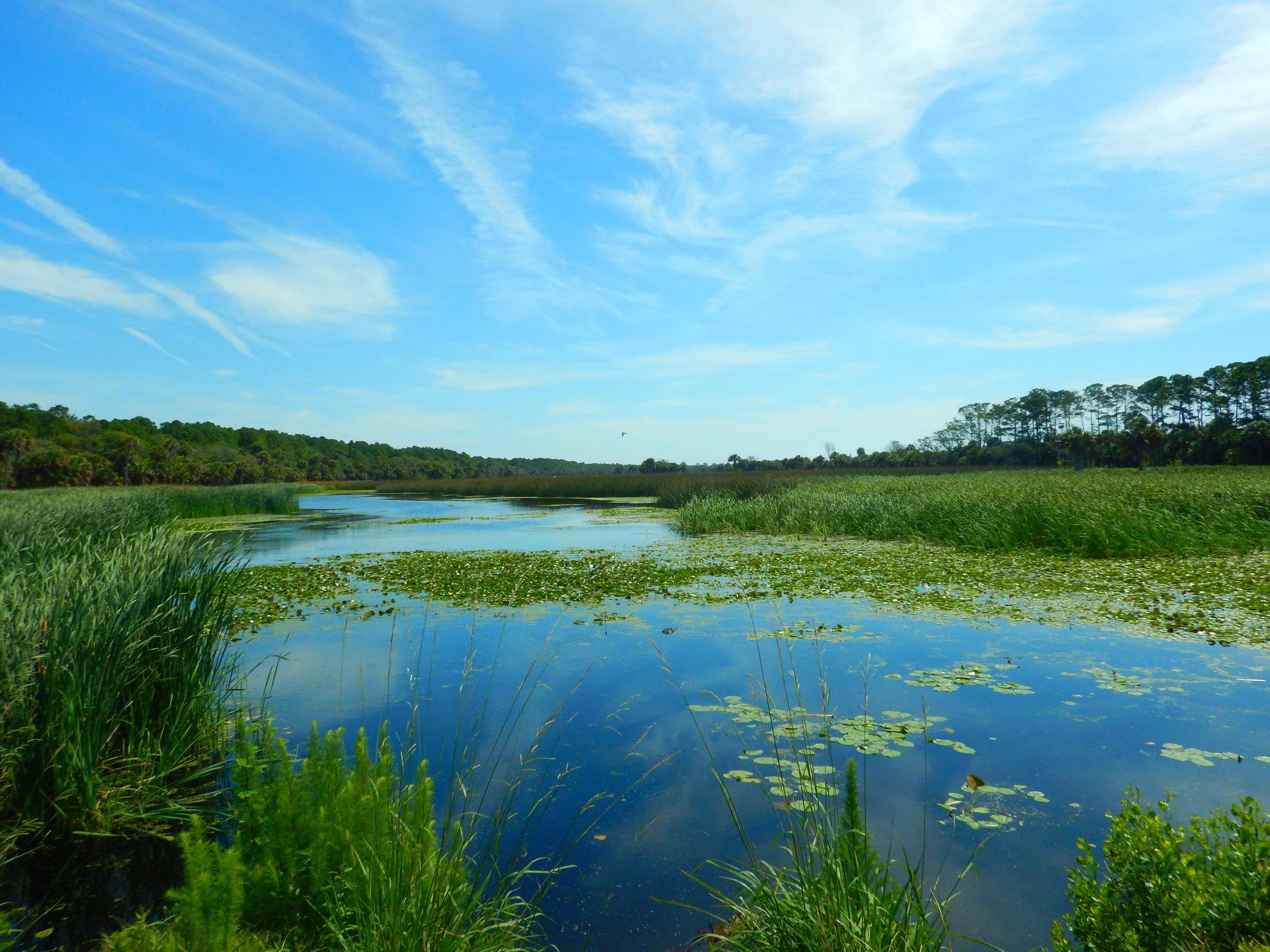 Lower Summerhouse pond.