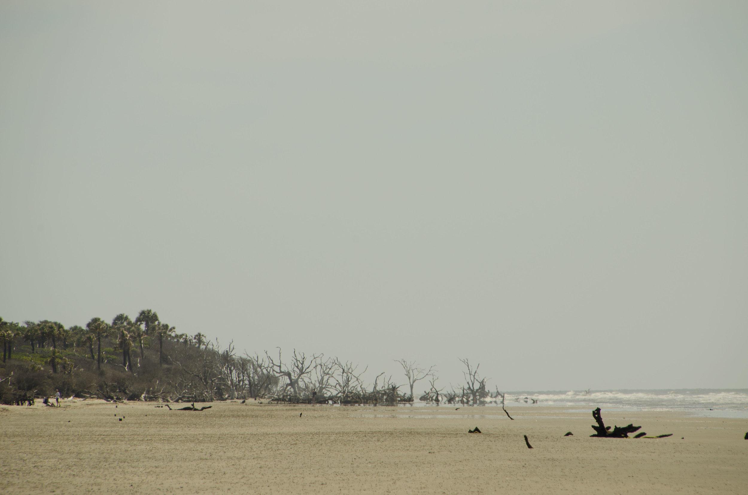 The bone yard beach is to the north.