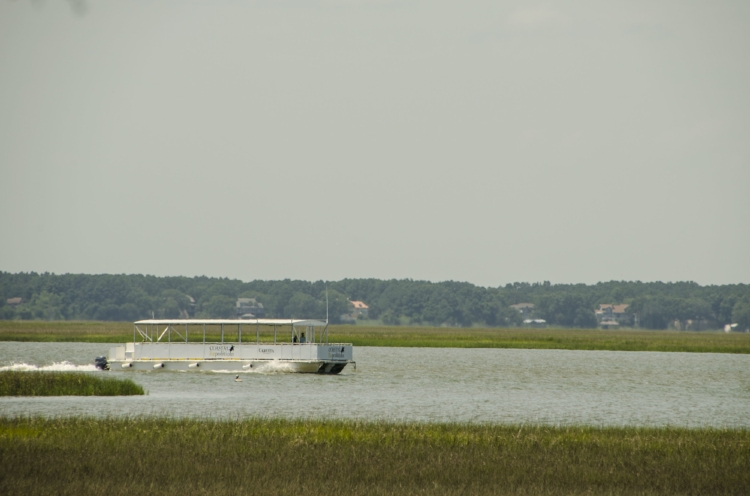 """The Coastal Expeditions'Ferry rounds the point before entering Summerhouse Creek to dock at Bulls Island. The viewpoint is from from the """"Middens"""" trail, which wanders along the salt marsh bordering the island's western edge."""