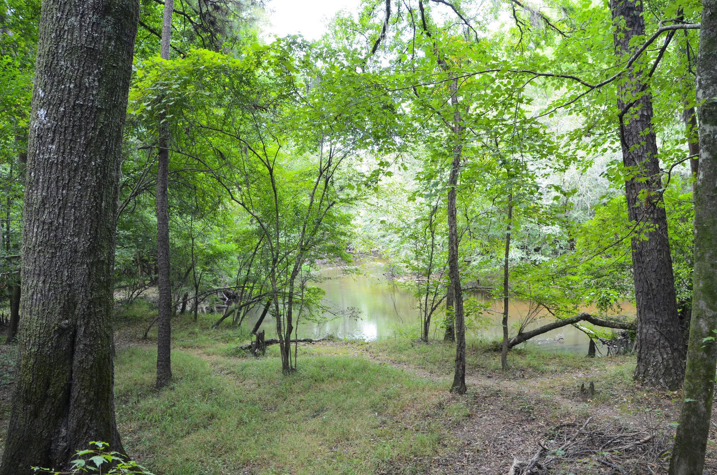 Lynches River Shots for Blog_9.JPG
