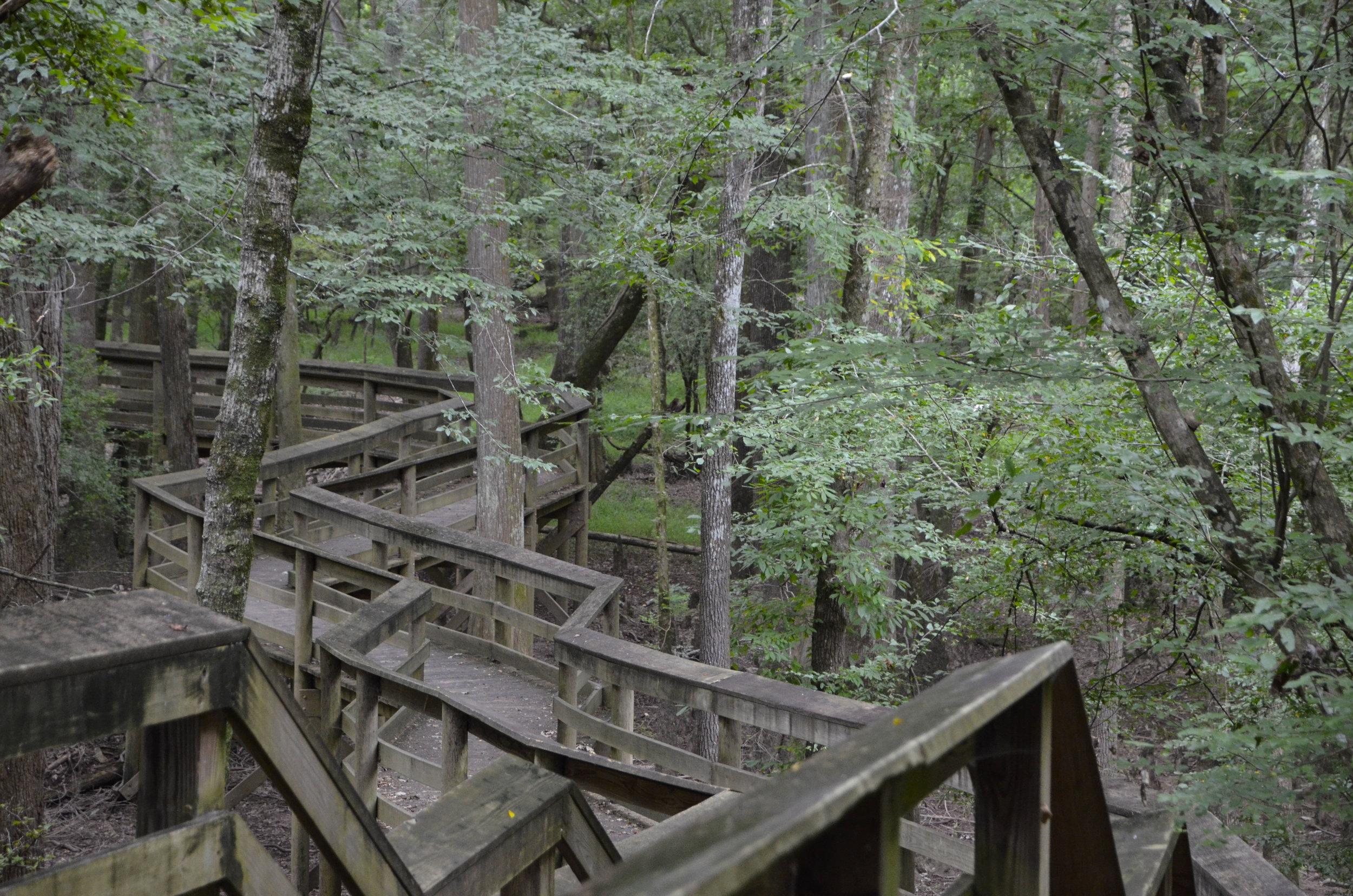 Lynches River Shots for Blog_7.JPG