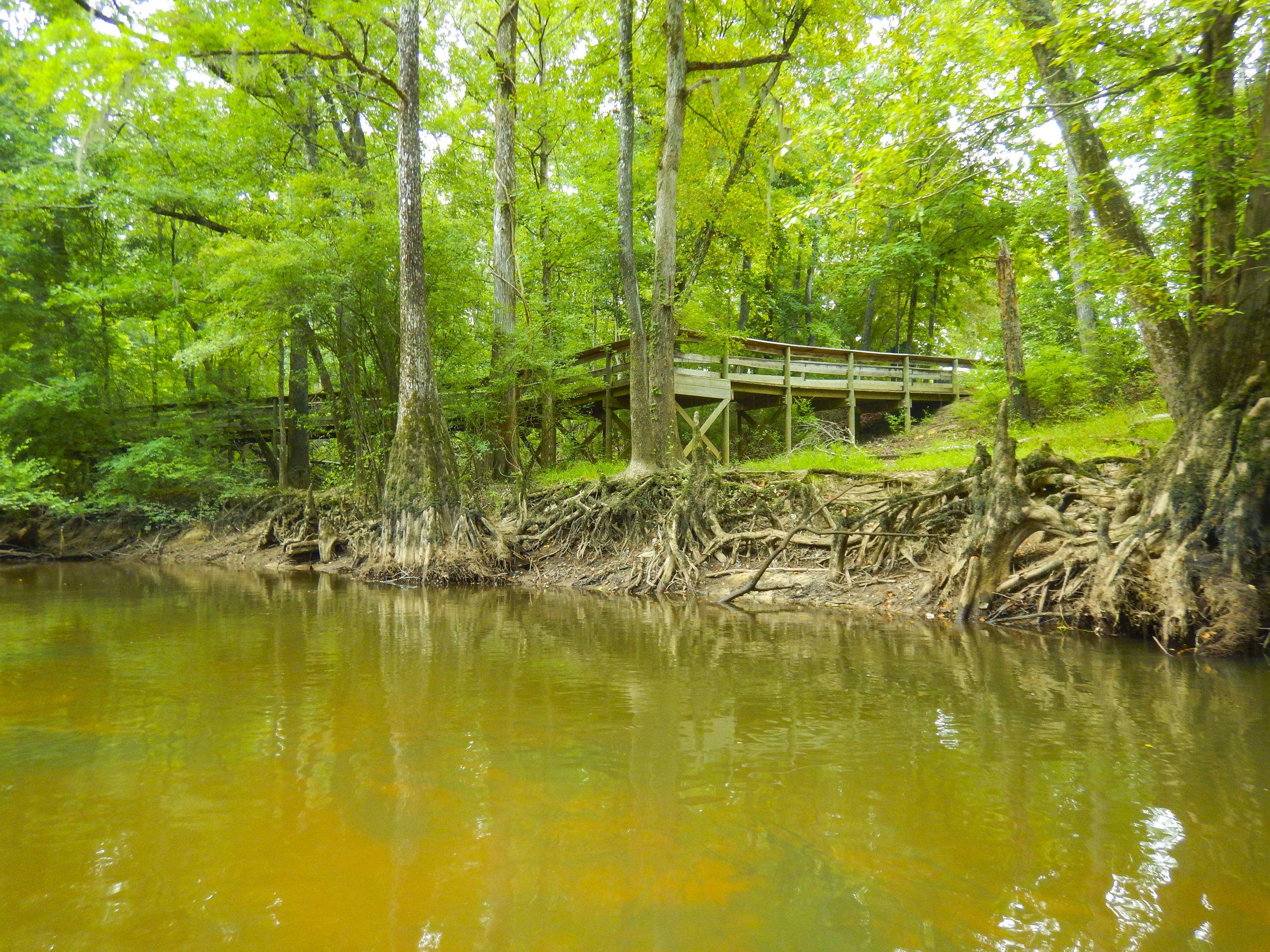 Lynches River Shots for Blog_21.JPG