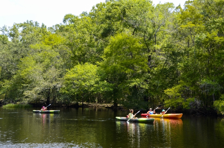 Kayakers leave Chris Anderson Landing for an afternoon of fun and adventure on the river.[SCDNR image by David Lucas -- see complete photo gallery at the end of the article.]