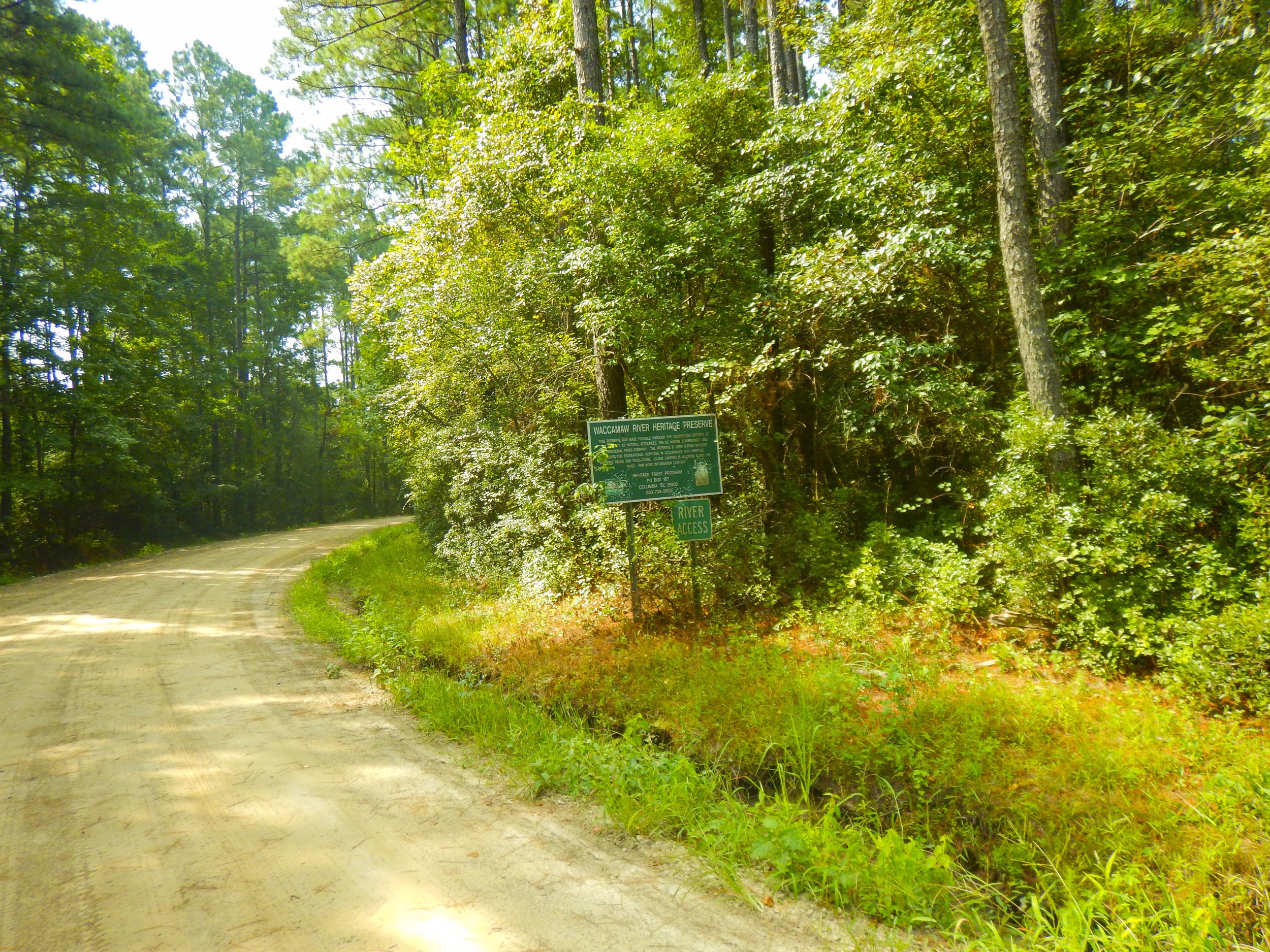 This dirt Lane off of Loop Road will take you to the Big Savannah Bluff throw-in Landing, located on an ox-bow of the Waccamaw River.