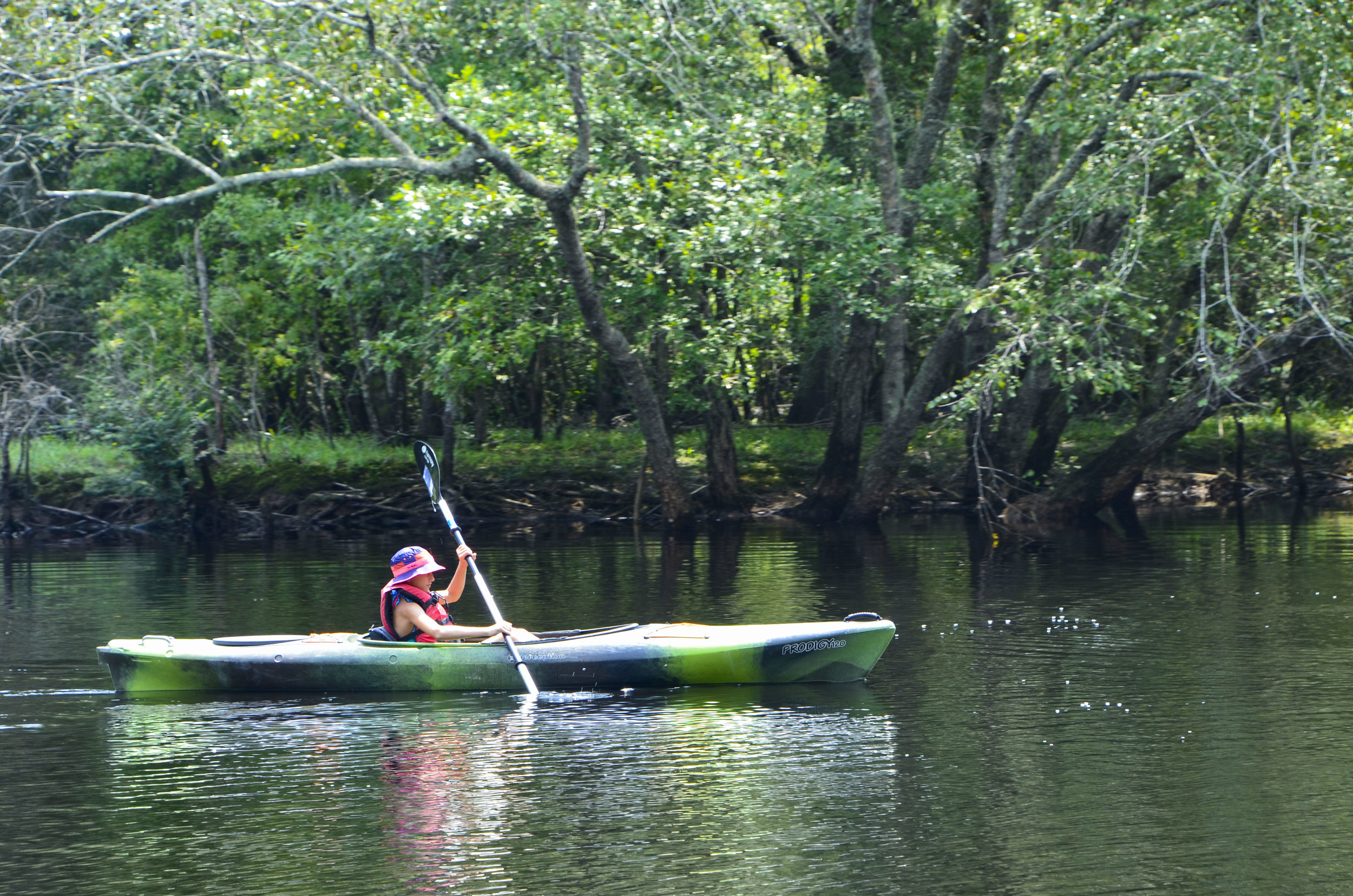 Young paddler getting in the groove near Chris Anderson landing.