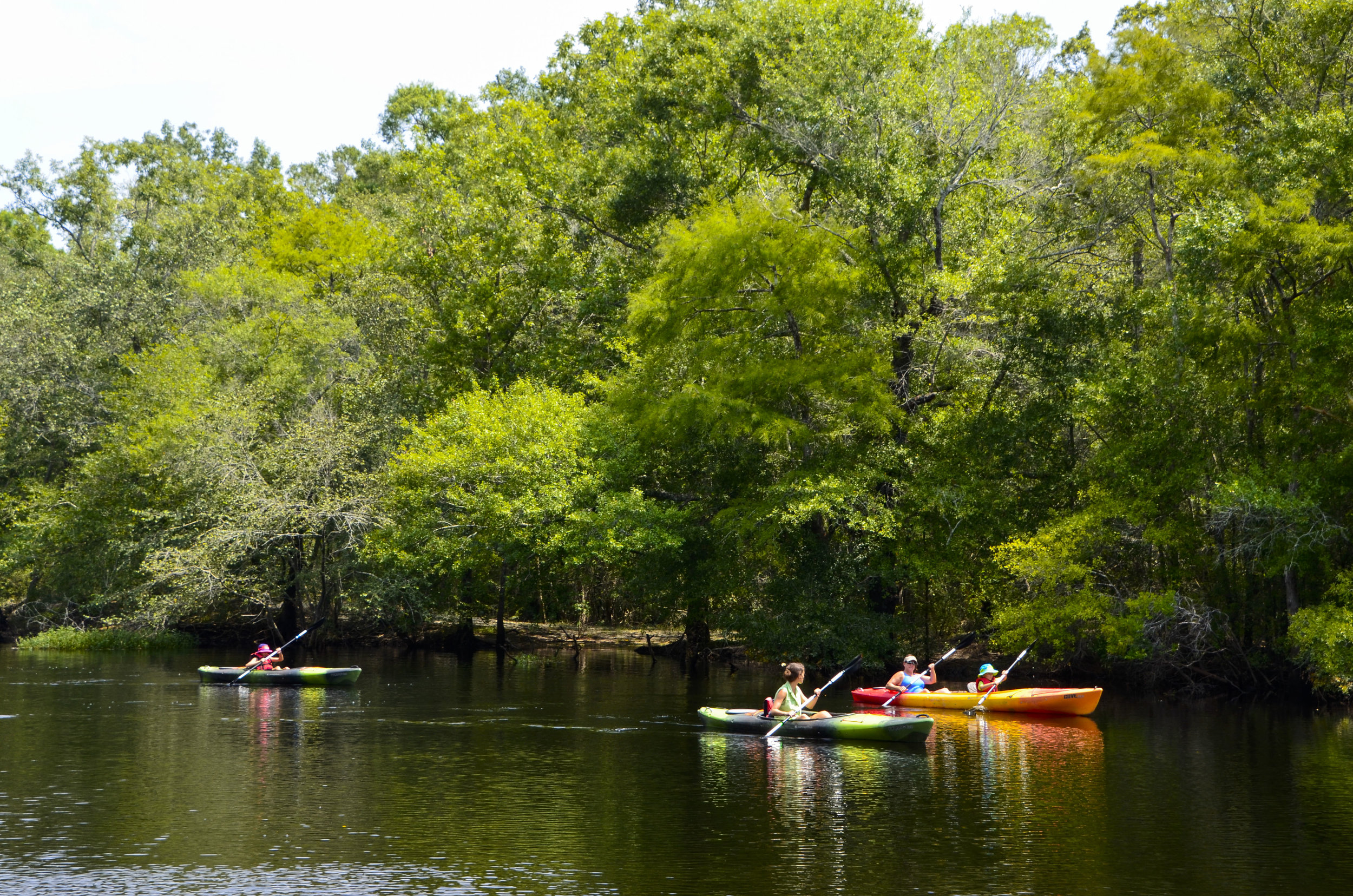 Paddlers on the Waccamaw River. [Note: The SCDNR strongly urges all boaters to wear an approved PDF at all times while on the water.]