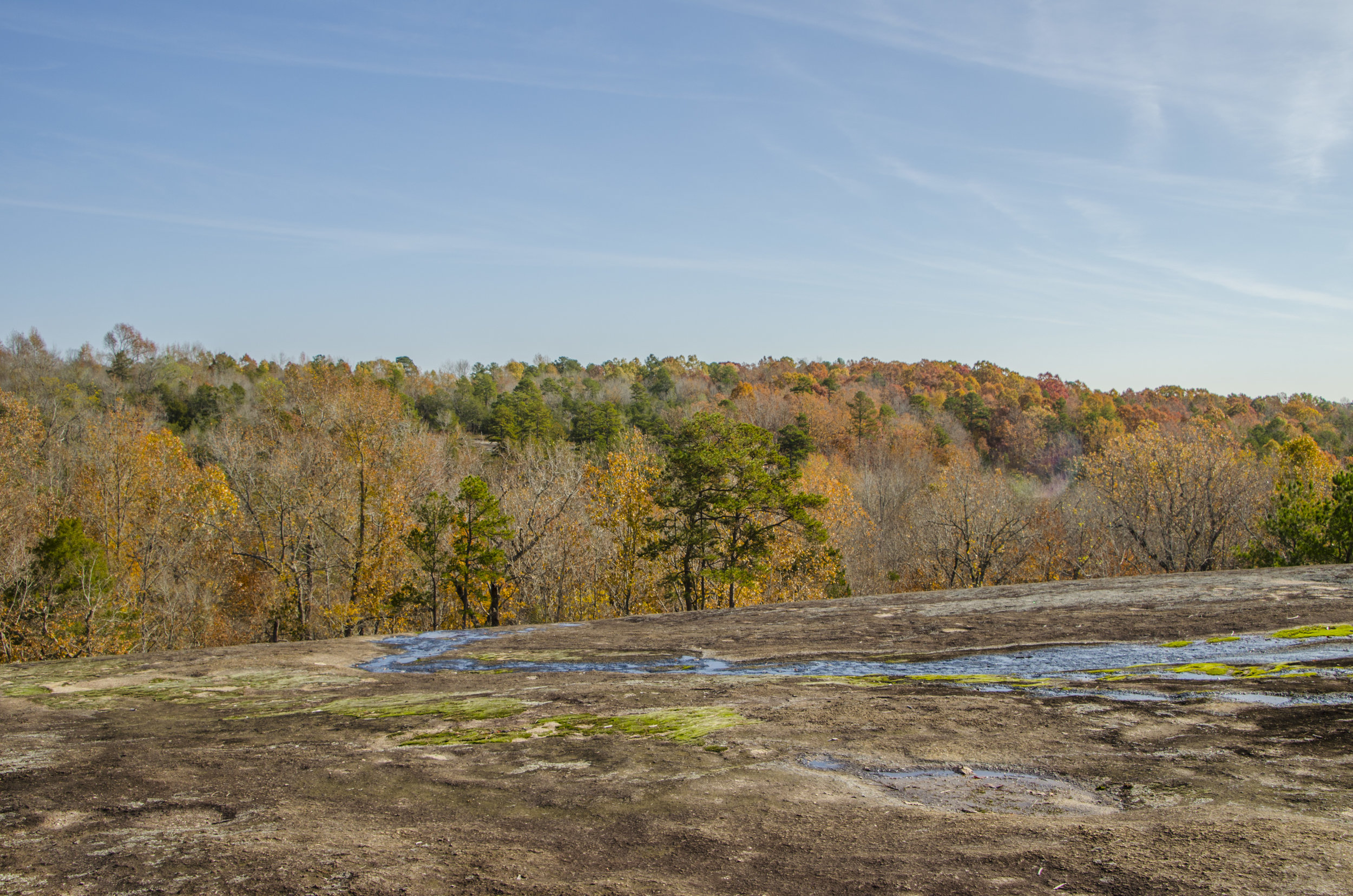 Forty Acre Rock_November2018_DLucas_037.JPG
