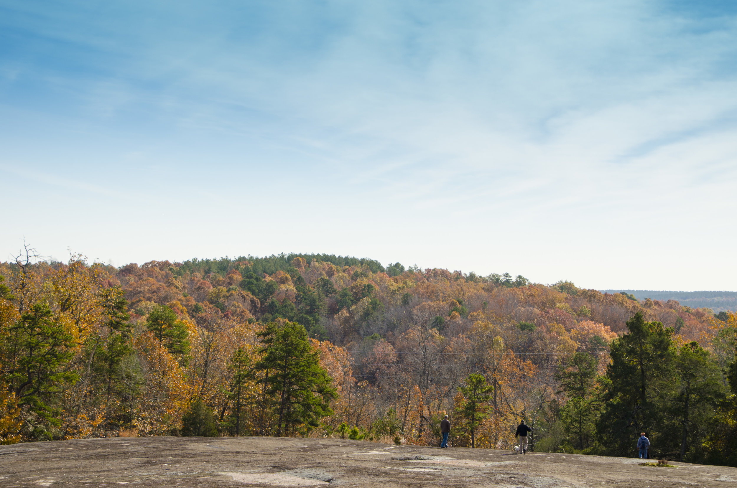 Forty Acre Rock_November2018_DLucas_058.JPG
