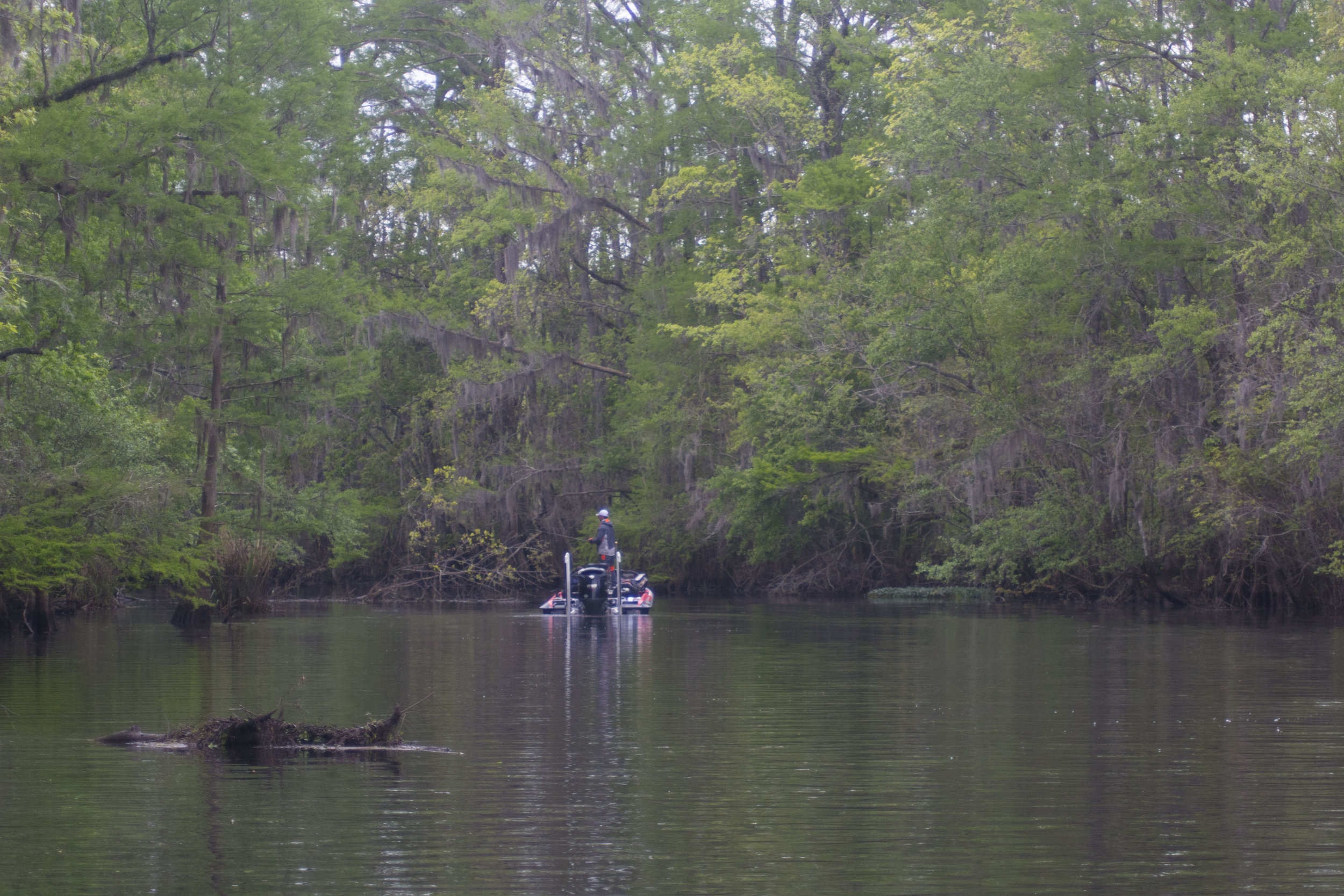 "A Bassmaster Elite Series angler fishes a bucolic stretch of the Waccamaw River during the 2016 Winyah Bay tournament. Anglers this year will again have to decide if fishing ""close to home"" in the watters around Georgetown will be a better strategy than making a long and difficult trek down to Charleston or McClellanville to try their luck in the Cooper or Santee rivers."