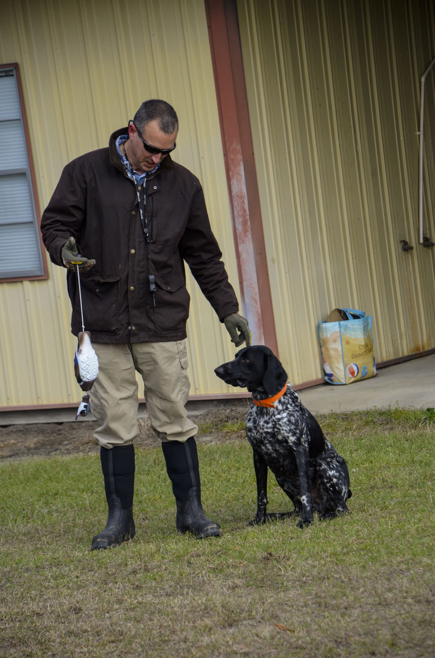 Love Farm Dog Photos_DLucas_063_1.JPG