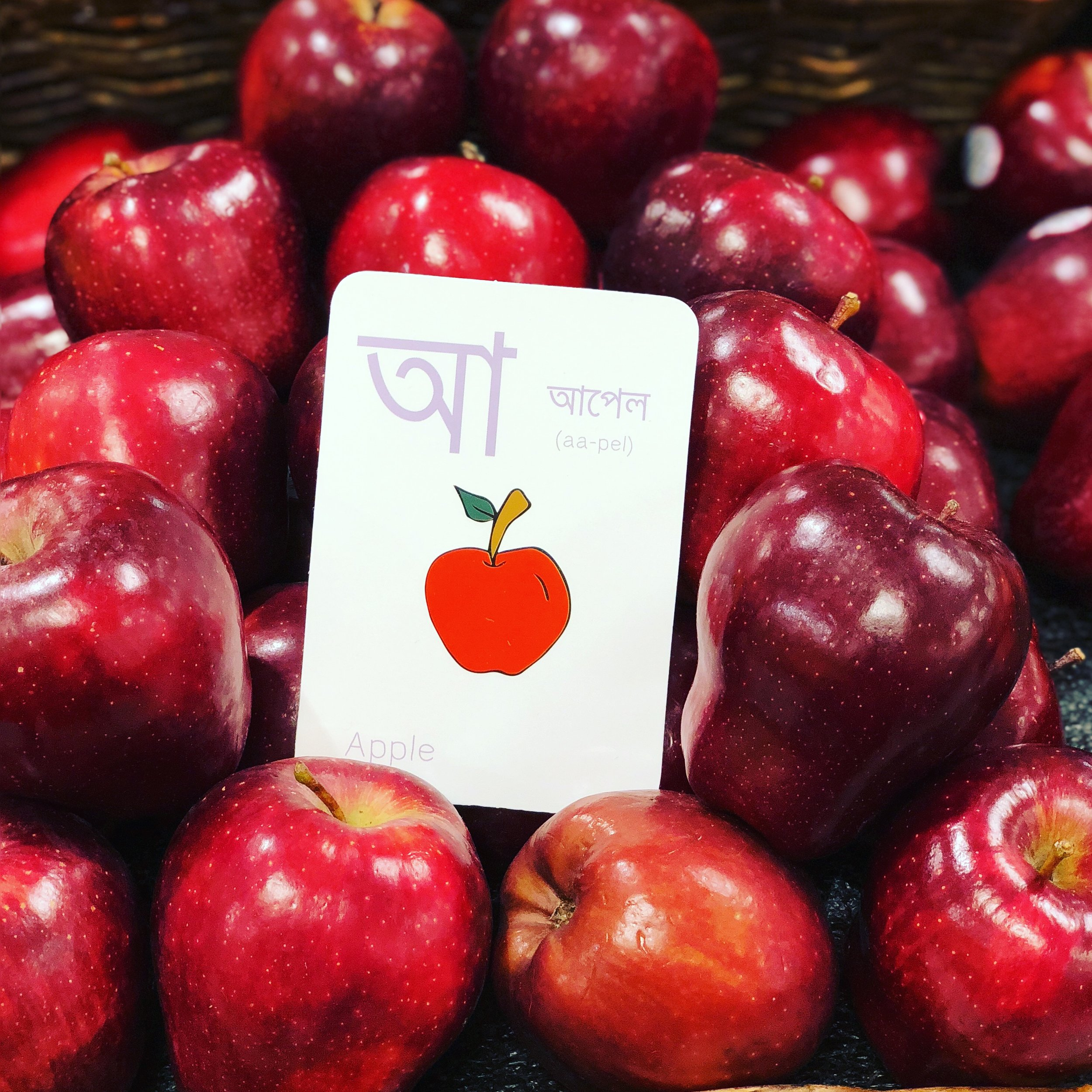 The letter আ from Guba's  Bengali Alphabet flashcards set