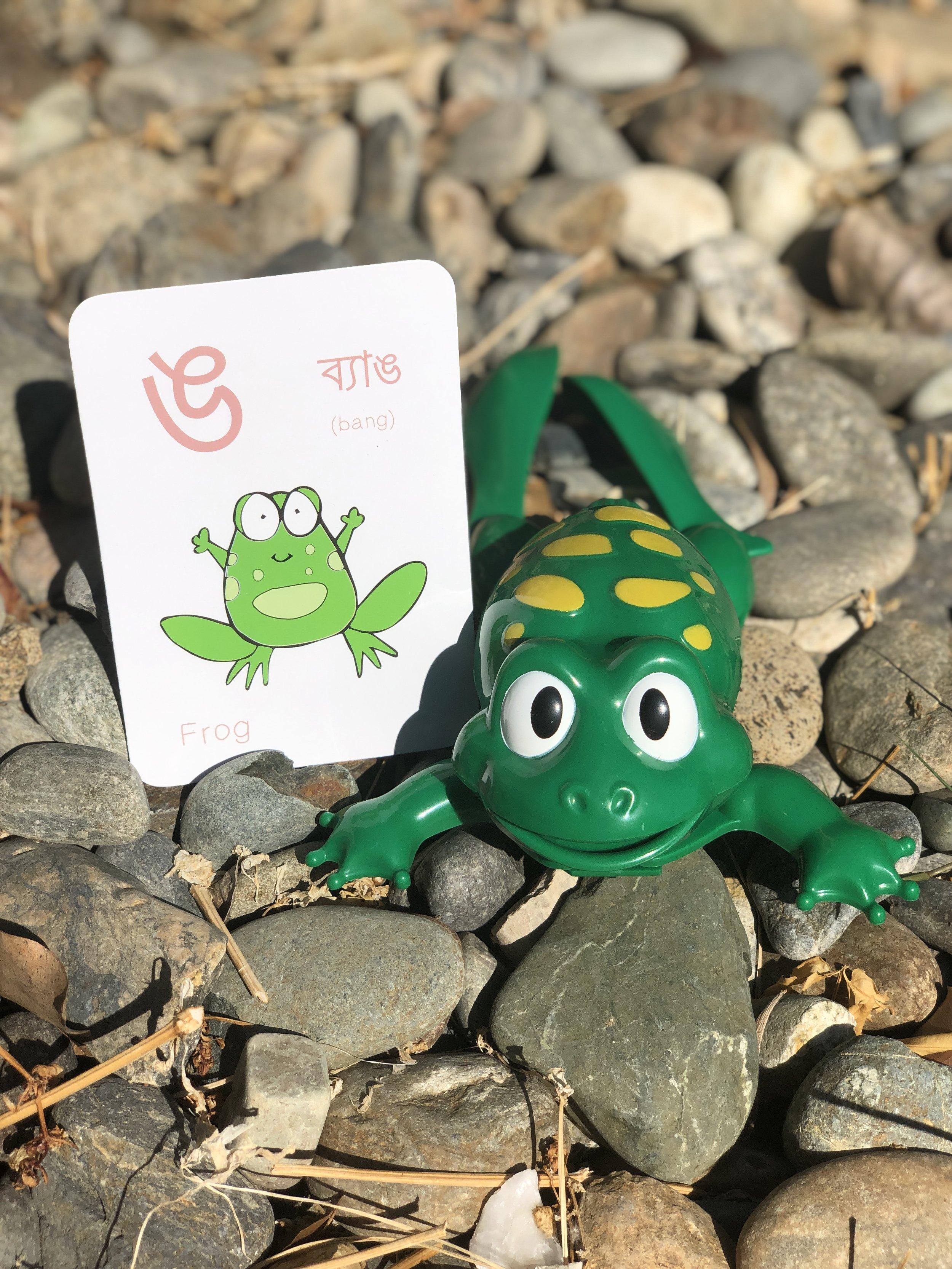 "The letter ঙ from Guba's  Bengali Alphabet flashcards set . Bangla slang ""Bang-er baccha!"" translates to ""You frog's child!"""