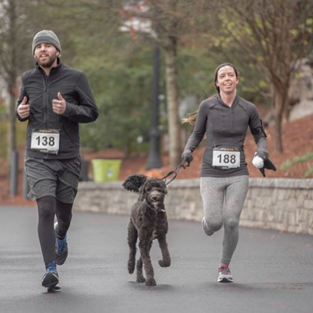 """Don't miss one of the greatest pup-friendly races of the year, the @piedmontpark Doggie Dash 5k and 1-mile fun run!! 🐾🏃♂️ •Sunday, March 10, 2019 •9:00AM Start Time •Benefit Event for the Piedmont Park Dog Parks ✨ ———————————————————————- The Piedmont Park Conservancy presents our 6th annual Doggie Dash! This dog friendly event invites participants with and without dogs to experience the Park alongside four-legged friends to benefit the Piedmont Park Dog Parks. Flapping ears and wagging tails are encouraged. 🐶  The event offers a shorter """"Dash"""" (approximately 1 mile) in addition to a 5K. After the dash and 5K, hang out in the sponsor circle for cool swag and information from our dog vendors. ✨ The walk/run begins at Magnolia Hall in Piedmont Park. 8:00 AM – Registration Open 9:00 AM – Start Time  All proceeds will be used to maintain and enhance the Piedmont Park Dog Parks, which we all LOVE. 🐶❤️ Hurry! Early registration pricing goes through March 7. You must register by TODAY, February 20th, to guarantee a t-shirt! 👕🐾❤️ #doggiedash #piedmontpark #dogfriendly5k 📸: @piedmontpark"""